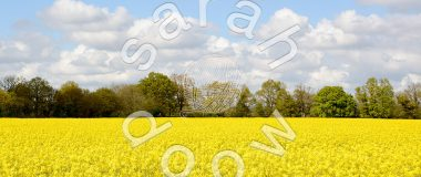 Countryside of Kent, England - stock photos