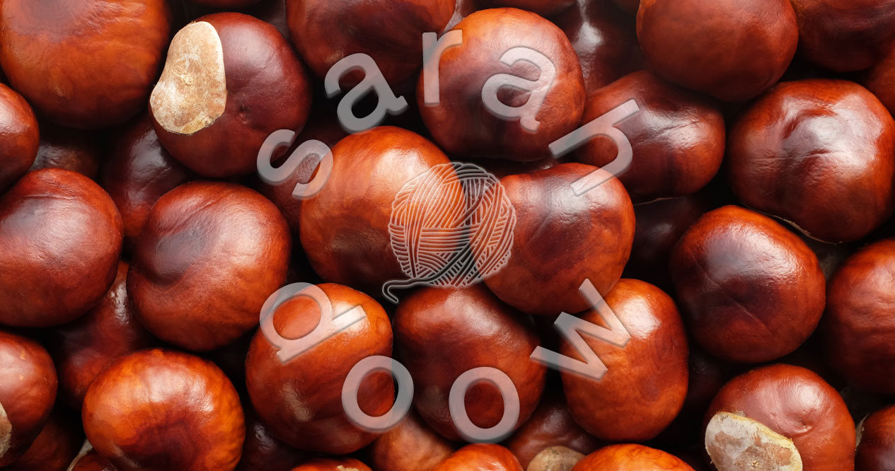 Shiny conkers – Society6 collection
