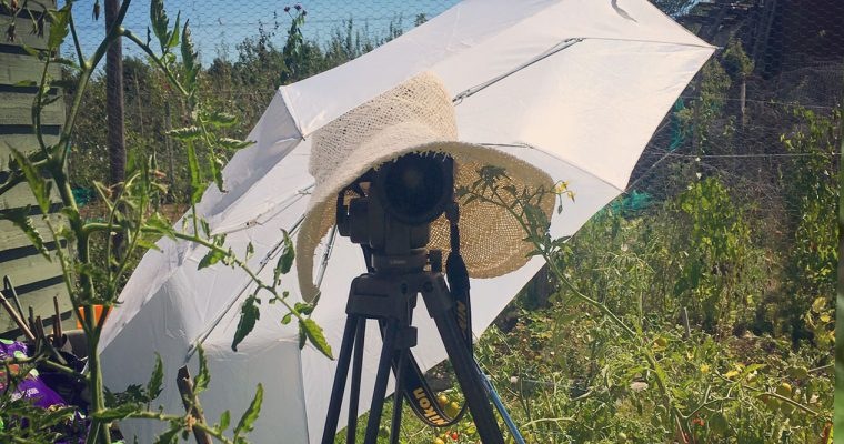 Behind the scenes – Allotment photo shoot