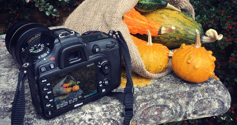 Behind the scenes – Putting the gourds to work
