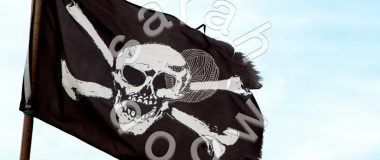 Society6 Jolly Roger collection