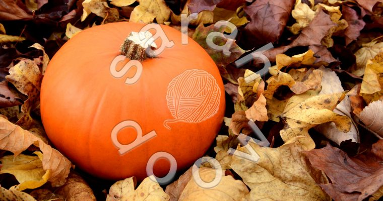 Orange pumpkin among autumn leaves – Society6 collection