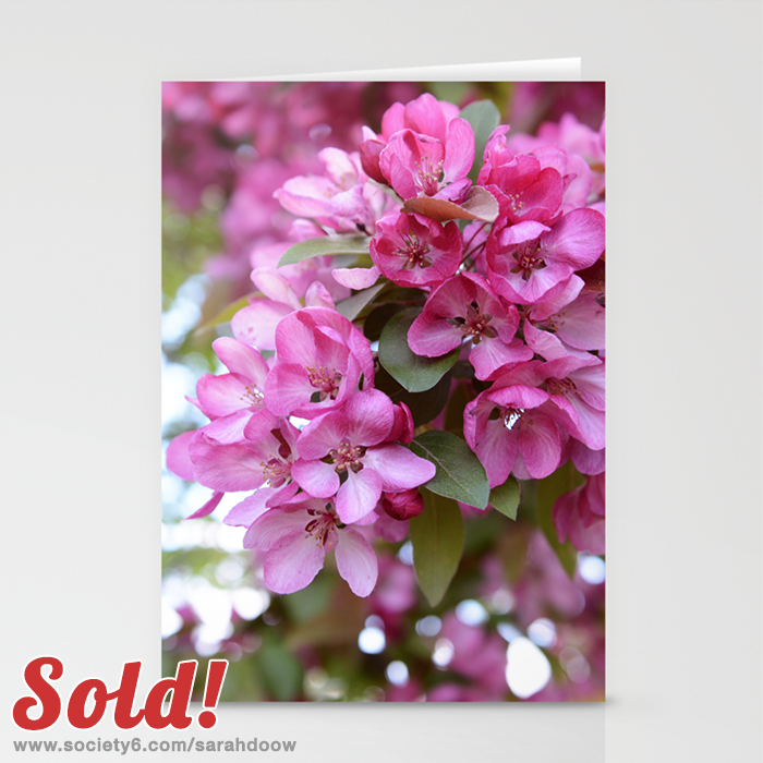Deep pink blossom cards