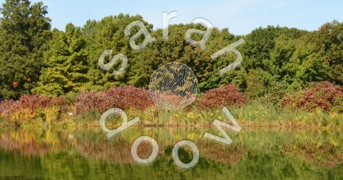 Society6 reflected trees collection