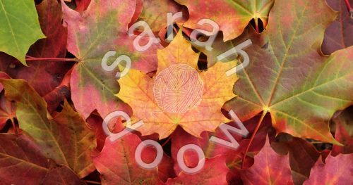 Society6 yellow maple leaf collection