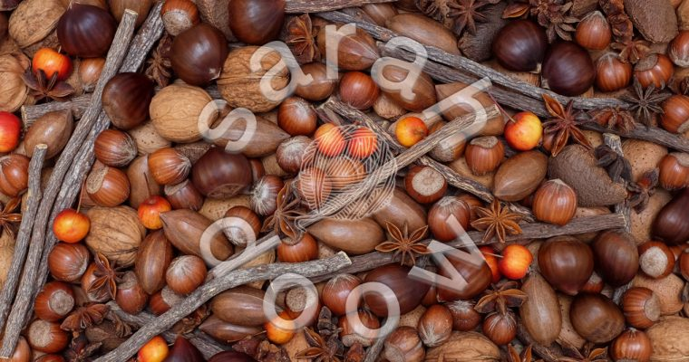 Festive nuts and spices – Society6 collection