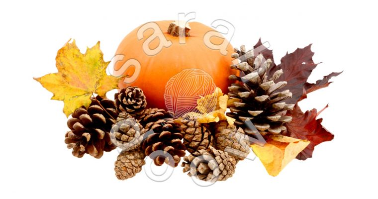 Pumpkin and pine cones – Society6 collection