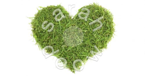 Society6 grass heart collection