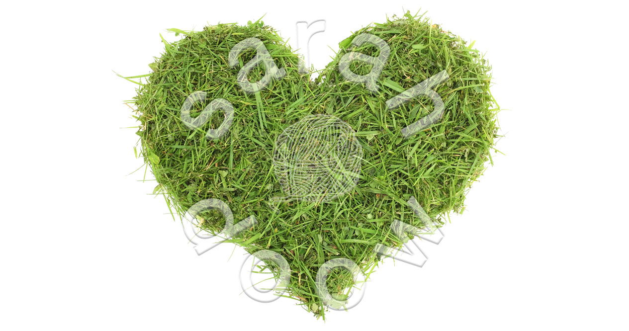 Green Grass Valentine heart – Society6 collection
